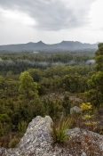upper-florentine-valley;upper-florentine;gordon-river-road;southwest-national-park;southwest-tasmani