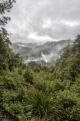 sumac-lookout;sumac-valley;south-arthur-forest-drive;the-tarkine;tarkine;northwest-tasmania;tasmania
