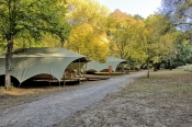 buchan-caves-reserve;victoria-national-park-tent-cabins;parks-victoria-camping-cabins;parks-victoria