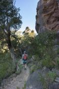australian-national-park;hiker;bushwalker