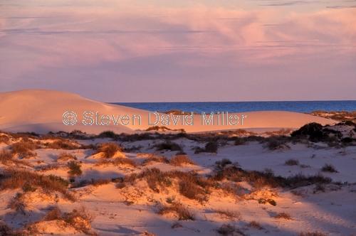 eucla;eucla national park;eucla sand dunes;eucla sanddunes;sand dunes;eucla sunset;the nullarbor;eyre highway;eyre hwy