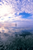 monkey-mia;shark-bay;peron-peninsula;monkey-mia-boat-tour;calm-seas;reflections