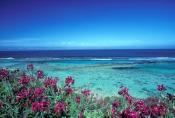 hangover-bay;nambung-national-park;cervantes;western-australia-national-park;indian-ocean