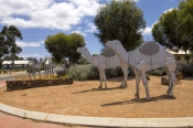 norseman;prinsep-street;camel-trade;camel-train;eyre-highway;nullarbor-crossing;western-australia-go