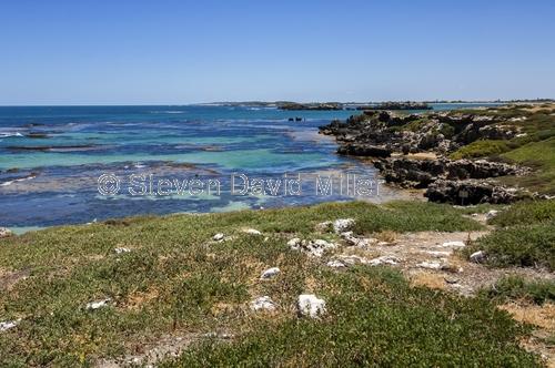penguin island;rockingham;penquin island reef;rockingham reef