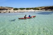 penguin-island;rockingham;kayaking
