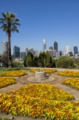 kings-park;perth;captial-of-western-australia;perth-skyline