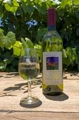 wine-bottle;wine-glass;windy-creek-winery;perth-winery;perth-wine-tasting-tours;perth;perth-tourist-