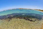 greens-pool;william-bay-national-park;green-water;clear-water;western-australia-national-park;denmar