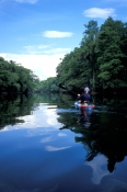 ginnie-springs;santa-fe-river;kayaking-on-the-santa-fe-river;kayaking-at-ginnie-springs