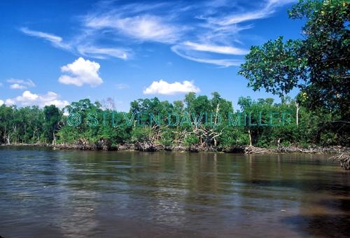 ten thousand islands;ten thousand islands national wildlife refuge;everglades national park;the everglades;florida national parks;mangrove islands
