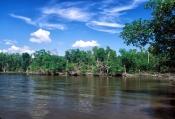 Ten Thousand Islands National Wildlife Refuge